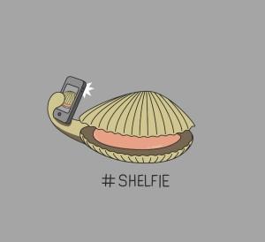 SHELFIE 3